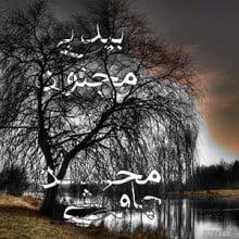 دانلود آهنگ محسن چاوشی بنام بید بی مجنون