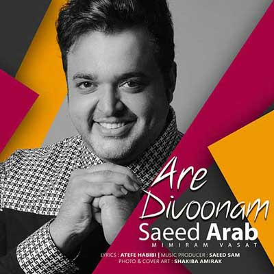 دانلود آهنگ سعید عرب بنام اره دیوونم