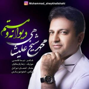 دانلود آهنگ دیوانه و مستم محمد شیخ علیشاهی