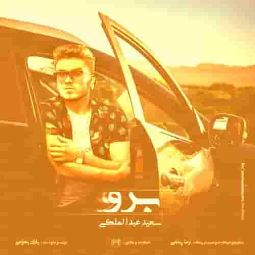 دانلود آهنگ برو سعید عبدالملکی