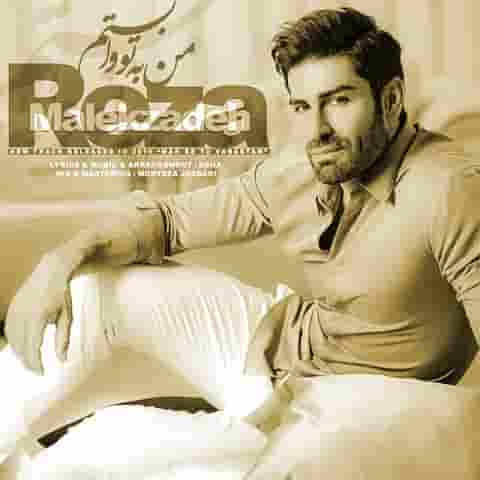 دانلود آهنگ من به تو وابستم رضا ملک زاده
