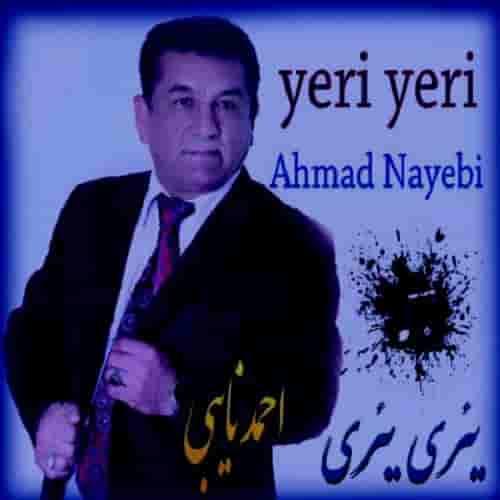 دانلود آهنگ یری یری از احمد نایبی