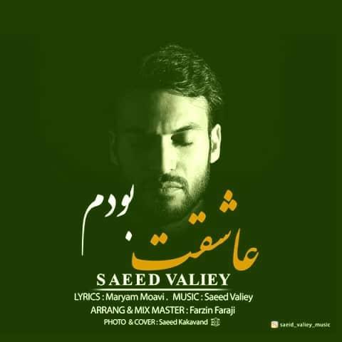 دانلود آهنگ عاشقت بودم از سعید ولیی