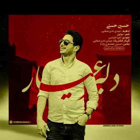 حسین حسنی دلبر عیار Beepmusic.org