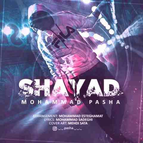 محمد پاشا شاید Beepmusic.org