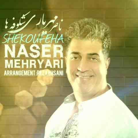 دانلود آهنگ شکوفه ها ناصر مهریاری
