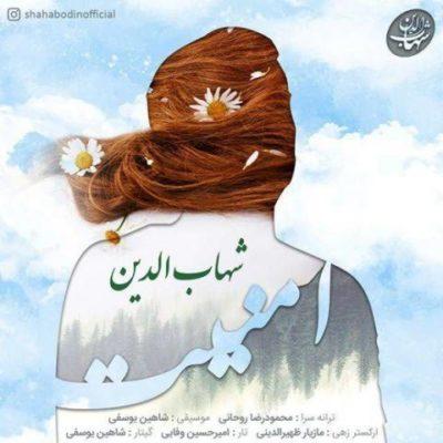 شهاب الدین امنیت