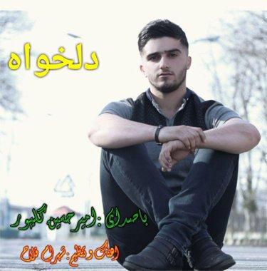 دانلود آهنگ دلخواه امیرحسین گلپور